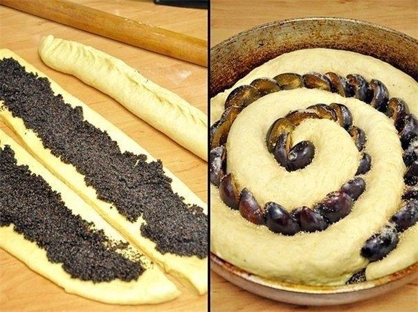 Растение мак сливовый пирог