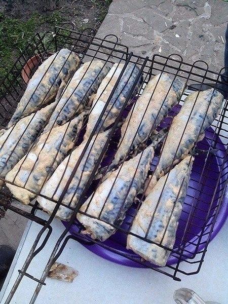 Фото к рецепту: Скумбрия на мангале